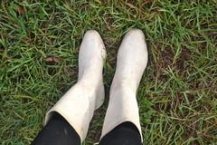 341 -- White wellies from Hevea -- Rubberboots -- Gummistiefel --Hevea Regenlaarzen (HeveaFan) Tags: rubberboots rubberlaazen 在泥里的靴子橡胶 kaplaarzen ゴム長靴 gummistiefel 威灵顿长靴 stiefel stivali stövlar ブーツ dunlop hevea aigle ripped wornout rainboots regenlaarzen wellies bottes wellworn caoutchouc galoshes wreckled trashed regenstiefel waterlaarzen soles tuinlaarzen loch leaky damaged trouée undicht versleten laarzen wellington kaput mud boue fertig riss gomma trou abgelatscht kaputt lek gumboots boots bottas vredesteinlaarzen vredesteinwellies vredesteinstiefel