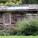 Rustic greenhouse near the vegetable garden at the Mendocino Coast Botanical Garden.