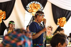 4657385518428848128_n Sbusi Zulu Umemulo Coming of Age Ceremony Reception Umlazi Durban KwaZulu-Natal South Africa November 2019 Siso (photographer695) Tags: excellent photos taken by sa photographer these not myself sbusi zulu umemulo coming age ceremony reception umlazi durban kwazulunatal south africa november 2019