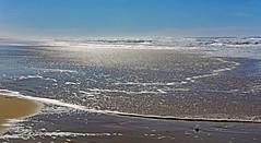 Plein Soleil (Ciceruacchio) Tags: soleil sun sole marielaforêt memories souvenirs hommage omaggio tribute sea mer mare ocean oceano beach plage spiaggia atlanticcoast côteatlantique costaatlantica nouvelleaquitaine france francia frankreich nikon