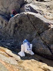 Jawas (socalbricks) Tags: lego legostarwars starwars jawa newhope r2d2 tatooine desert beach ravine legophotography legooutdoors legoutdoorphotography legostarwarsphotography toyphotography legoforcedperspective