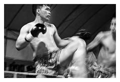 MUAY-THAI  ( Chiang-Mai ) (RAMUBA) Tags: muaythai tailandia deporte sport boxeo boxing