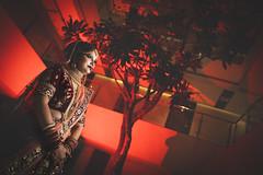 ~~ That Special Day ~~ (Sagar Mahadik Photography) Tags: weddingphotographer weddingphotography wedding newjourney weddingseason weddings weddingtrend weddingsetup wetogether weddingshooters weddingsutra blessings indianwedding indianculture indianbride india bigindianweddings culture tradition colors sonyalpha tamron pune maharashtra mumbai satara kolhapur