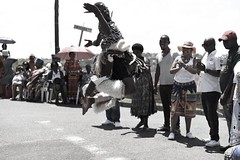 638504316558114816_n Sbusi Zulu Umemulo Coming of Age Ceremony South African Zulu Cultural Singing and Dancing Umlazi Durban November 2019 (photographer695) Tags: excellent photos taken by sa photographer these not myself sbusi zulu umemulo coming age ceremony south african cultural singing dancing umlazi durban november 2019