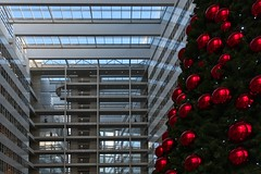 I want Christmas cubes, not Christmas balls. (Rob Oo) Tags: southholland netherlands sgravenhage ccby40 denhaag holland nederland thehague thenetherlands ro016b iwantchristmascubesnotchristmasballs architecture lines curves abstract christmas