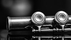 Music - 7856 (✵ΨᗩSᗰIᘉᗴ HᗴᘉS✵85 000 000 THXS) Tags: music musicinstrument metal flûte flute flûtetraversière musique sony sonyilce7 sonyilce7m3 belgium europa aaa namuroise look photo friends be yasminehens interest eu fr party greatphotographers lanamuroise flickering challenge blackandwhite bw monochrome bokeh
