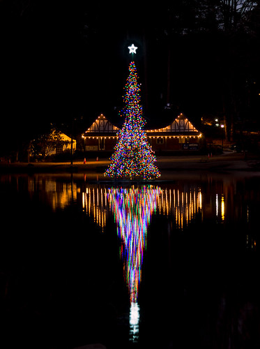Avondale Lake Christmas tree (03)