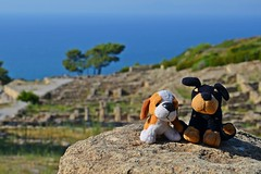 two friends in Kamiros :) (green_lover (your COMMENTS are welcome!)) Tags: doggies toys kamiros rhodes greece stone two sea