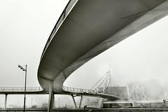 PASARELA DELICIAS (a-r-g-u-s) Tags: pasarela fog niebla invierno puente lineascurvas s fall autumn
