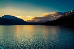 Fjord Mornings (Tony Shertila) Tags: cruise europe pig utne hordaland norway 20170414045734 sunrise dawn morning golden glow fjord handangerfjord scandinavia water sea scenery scenic