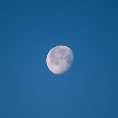 Lune du matin (Alain Stoll) Tags: lune moon