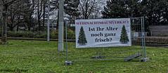BS-Heidberg, Adventspaziergang (bleibend) Tags: 2019 bs braunschweig em5 em5marki leicadgsummilux25mmf14 niedersachsen omd olympus olympusem5mark1 olympusomd m43 mft