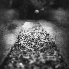 3489 (Elke Kulhawy) Tags: art abstract abend rain regen raindrops regentage kunst köln kontrast verschwommen unscharf blackandwhite bnw bw bnwbw bwphotographie black monochrome monochromes monchrome wege way wasser water