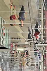 36494 (benbobjr) Tags: birmingham westmidlands midlands england english uk unitedkingdom gb greatbritain britain british birminghamnewstreet newstreet newstreetstation newstreettrainstation newstreetrailwaystation train railway britishrail station networkrail birminghamloop crosscountryroute majorhub suburbanservices crosscityline gatewayplus qqn gatewaybirmingham pallasadesshoppingcentre bigcityplan