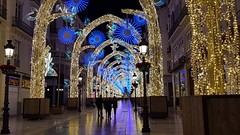 After the crowds have gone (robin denton) Tags: christmas malaga lights spain lightshow christmaslights decorations street crowds crowd 2019 december málaga