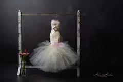 Pizzazz! (hehaden) Tags: dress gown miniature dressrail vase flowers lowkey