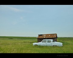 baby blue (Gordon Hunter) Tags: baby blue azure pastel color car auto vehicle shed flat prairies simple green grass field lichen shakes shingles view distance open vast country rural sk canada gordon hunter nikon d5000 abandoned derelict decay old vintage