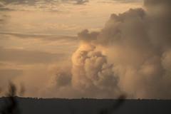 NSW Bushfires Dec 2019 (Mr Matboy) Tags: fire smoke nsw bushfire bush australia 2019 2020 summer