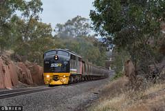 Big Hill (Dobpics O'Brien) Tags: s312 s302 ssr grain big hill bendigo woorinen engine locomotive diesel rail railway railways train victorian victoria vr