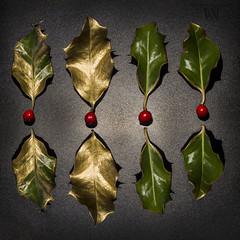 holy x 8 (marianna armata) Tags: holy leaves gold green red berry christmas stilllife arrangement tabletop macro mariannaarmata
