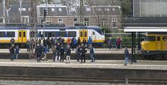 Nog even gauw een foto (Tim Boric) Tags: haarlem station trein train spoorwegen railways treinliefhebbers railwayfans afscheidsrit ddm1 ddm