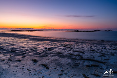 Purple Sunset (GIjs Rijsdijk) Tags: aberwrach bretagne channel coastalarea irix15mm landeda lowtide mud salt abbey beach breizh brittany coast fish france hightide kasefilter longexposure sand sea seagull seascape shell sunset tide wind