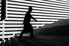 lines (brekna) Tags: street streetphotography streetphotobw streetphoto fujifilm xt1 bw blackandwhite monochrome man minimal human people outdoor light lines geometry walking dark shadow