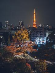 東京鐵塔 Tokyo tower (里卡豆) Tags: olympusem5markiii olympus omd 25mm f12 olympus25mmf12pro pro japan tokyo 關東 日本 東京