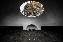 Frankfurt0609 Hauptfriedhof (schulzharri) Tags: frankfurt friedhof cemetry deutschland germany dark düster herbst autumn spooky