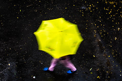 (sharmi_diya06) Tags: street streetphotography streetphot abstract rain weather man umbrella outside letsexplore natgeoyourshot natgeophotographer natgeophotographers yourshotnatgeo action colors color contrast