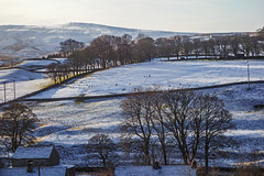 just a dusting (lowooley.) Tags: eastallenvalley northpennines northumberland hills snow trees