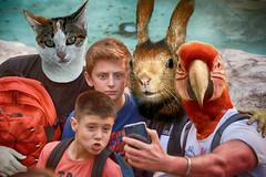 Selfie (Collage) (COLINA PACO) Tags: selfie retrato ritratto portrait fotomanipulación fotomontaje photomanipulation kafkian oddportrait familia family franciscocolina
