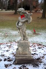 001 -1crpvib1stpf (citatus) Tags: decorative statue christmas bow tie mount pleasant cemetery toronto canada fall morning 2019 pentax k1 ii