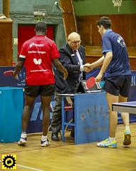 _DB10265 (Sprocket Photography) Tags: tabletennis tabletennisengland bat ball net table player competition britishpremierdivision batts ormesby harlow essex umpire handshake