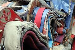 Saddles (IMG_2310) (Wonder Westie) Tags: saddles ócrabháin seánócrabháin travel nepal earthsedge canon canoneos canoneosm50
