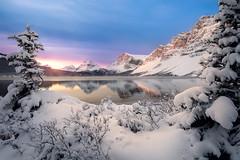 Bow Lake Banff Canada Jason Gambone 2019 (Jason Gambone) Tags: jasongambonecom october jasongambone jfgambone mountains jfgambonephotos rockies banffnationalpark jasper wildlife alberta jfgambonephotography canada canadianrockymountains 2019 banff