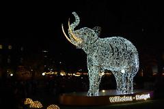 191206_191035_DSC00105 (JP121287) Tags: sony⍺7markiii sony⍺7iii sonyilce7m3 sonyalpha 7m3 emount ⍺7iii ilce7m3 sigmafe50mmƒ14dg stuttgart wahrzeichen weihnachtsmarkt