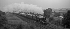 LMS 'Pacific' 6201 nearing Banbury with a London Marylebone-Shrewsbury steam special on 17 September1988. (mikul44171) Tags: 6201 princessroyal special banbury therobertstephenson september1988 mist autumn steam
