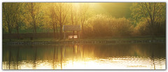 Lake in gold... (Szemeredi Photos/ clevernails) Tags: hungary somberek lake gold sunset tree bunch bush light backlight refelection relax holiday visit composition outdoor park fishing spirng color romantic memory beauty panorama