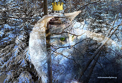 THE CHRISTMAS SNOW CAT. Dedicated to my Dear Friend Vera. (Viktor Manuel 990.) Tags: winter snow forest cat invierno nieve bosque gato composition compsición digitalartandpainting arteypinturadigital querétaro méxico victormanuelgómezg