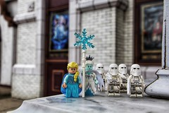 Elsa and some Frozen friend...