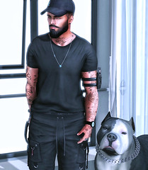 [ 📷 - 230 ] (insociable.sl) Tags: navajo magnificient ink tattoo beard black cap snapback streetwear bully dog animal pet model boy man male edit sl secondlife