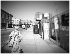 242 (play with light and shadow) Tags: new york nyc coney island street monochrome black white sw