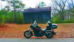 20191215_112615_HDR_v1 (willa.jabir) Tags: honda shadow aero vt750 motorcycle scooter panda clampett sport outdoors trees building abandoned enchanta