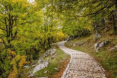 Vikos (stylianosl) Tags: fineart brige artphoto landscape sunset landsceene nature corfuartphoto naturecolors finephotography landscapes clouds artphotography river sunsetcolors vickos longexposure landscapephotography travelphotopgraphy art sky greece epirus stylianosphotography stylianos travel