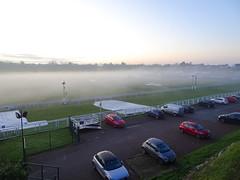 Chester racecourse, 2019 Nov 30 -- photo 2 (Dunnock_D) Tags: britain cheshire chester england gb roodee uk unitedkingdom blue cars dusk fog grass green lateafternoon mist racecourse sky tree twilight