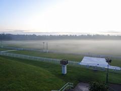 Chester racecourse, 2019 Nov 30 -- photo 1 (Dunnock_D) Tags: britain cheshire chester england gb roodee uk unitedkingdom blue dusk fog grass green lateafternoon mist racecourse sky tree twilight