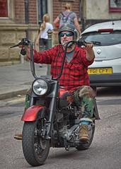 """Rollin on down the Road... (Harleynik Rides Again.) Tags: biker harleydavidson hd harley rider bike moto motorcycle harleynikridesagain"