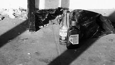 Bucky and Beer (byronv2) Tags: edinburgh edimbourg blackandwhite blackwhite bw monochrome bottle beer booze alcohol drink emptybottles litter refuse trash shadow buckfast princesstreet princesstreetgardens