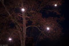 Vorweihnachtszeit --- Pre-Christmas (der Sekretär) Tags: advent baum blatt blätter cantonofneuchâtel christmas herrenhuterstern herrnhutstar himmel kantonneuenburg lampe licht lichtquelle montmirail nacht neuchâtel neuenburg schweiz stern switzerland vorweihnachtszeit weihnachten lasuisse lamp leaf leafs light night nightly nächtlich prechristmas sky star tree vorweihnachtlich